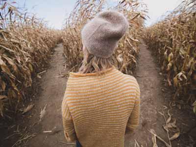 Corn Maze date idea